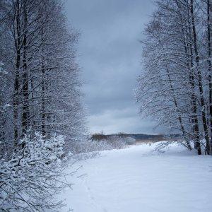 jul (1 av 1)-2