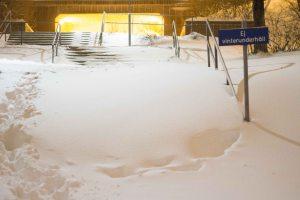 snö (1 av 1)-5