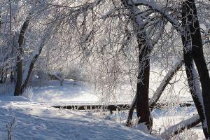vinter (1 av 1)-2