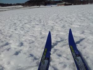 skidor landet-1