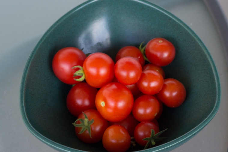 tomat-1