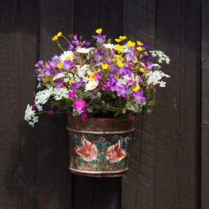 midsommar blommor (1 av 1)