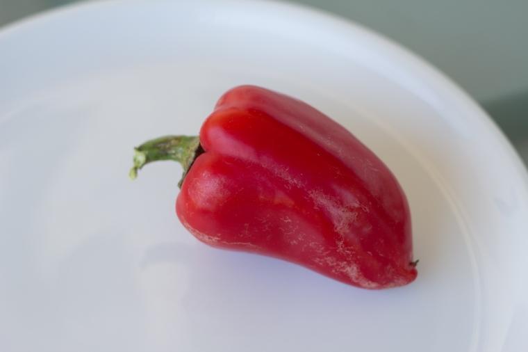 paprika (1 av 1)-2