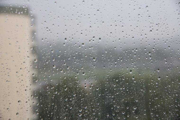 regn (1 av 1)
